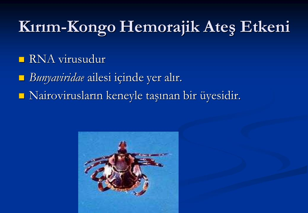 Kırım-Kongo Hemorajik Ateş Etkeni  RNA virusudur  Bunyaviridae ailesi içinde yer alır.  Nairovirusların keneyle taşınan bir üyesidir.