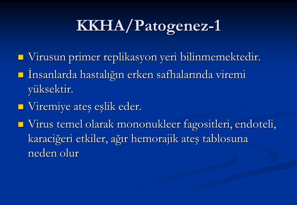 KKHA/Patogenez-1  Virusun primer replikasyon yeri bilinmemektedir.  İnsanlarda hastalığın erken safhalarında viremi yüksektir.  Viremiye ateş eşlik