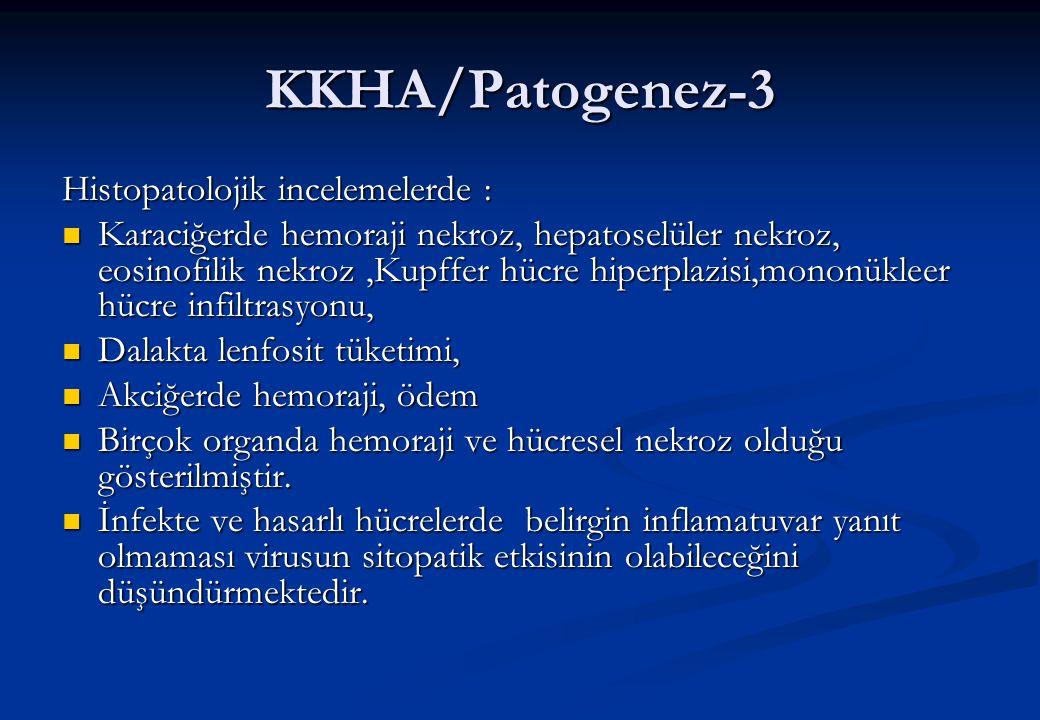KKHA/Patogenez-3 Histopatolojik incelemelerde :  Karaciğerde hemoraji nekroz, hepatoselüler nekroz, eosinofilik nekroz,Kupffer hücre hiperplazisi,mon