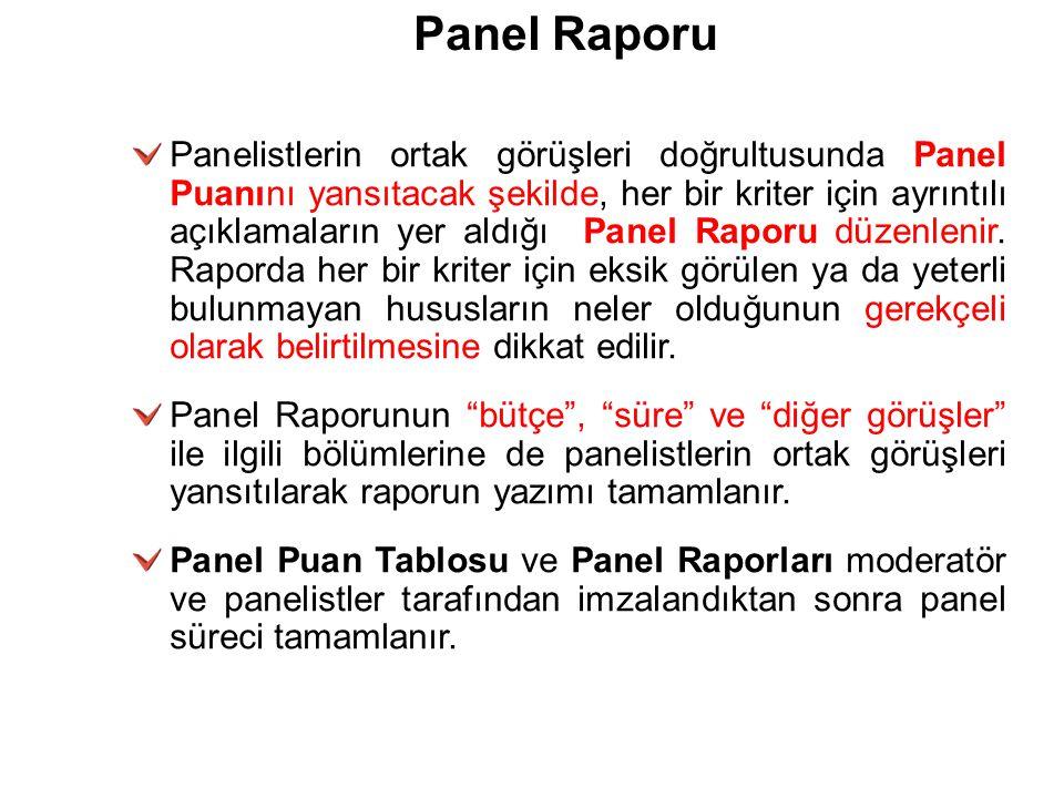Panel Raporu Panelistlerin ortak görüşleri doğrultusunda Panel Puanını yansıtacak şekilde, her bir kriter için ayrıntılı açıklamaların yer aldığı Pane