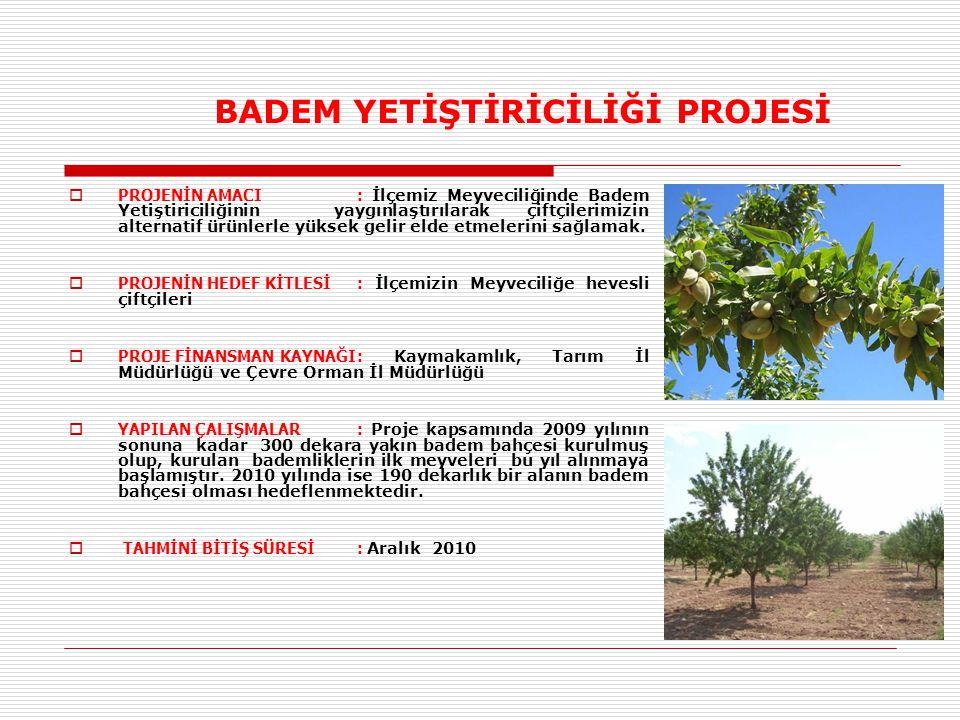 BADEM YETİŞTİRİCİLİĞİ PROJESİ  PROJENİN AMACI: İlçemiz Meyveciliğinde Badem Yetiştiriciliğinin yaygınlaştırılarak çiftçilerimizin alternatif ürünlerle yüksek gelir elde etmelerini sağlamak.