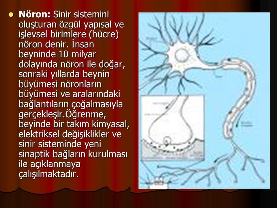 Nöron: Sinir sistemini oluşturan özgül yapısal ve işlevsel birimlere (hücre) nöron denir. İnsan beyninde 10 milyar dolayında nöron ile doğar, sonrak