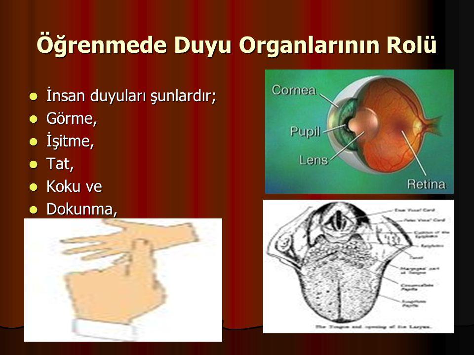 Öğrenmede Duyu Organlarının Rolü  İnsan duyuları şunlardır;  Görme,  İşitme,  Tat,  Koku ve  Dokunma,