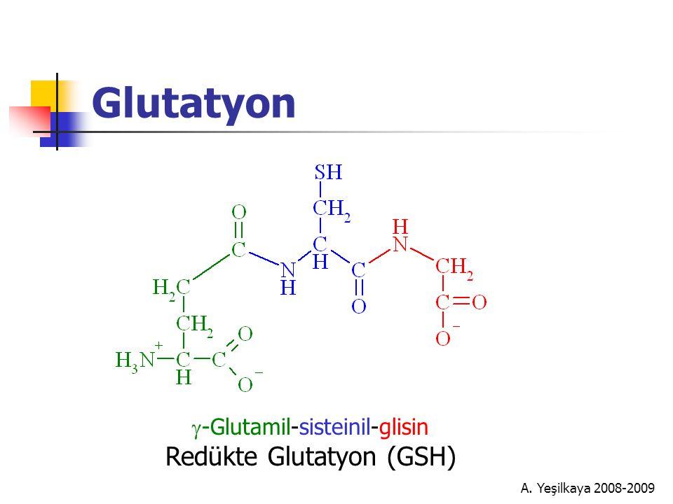 A. Yeşilkaya 2008-2009 Glutatyon  -Glutamil-sisteinil-glisin Redükte Glutatyon (GSH)