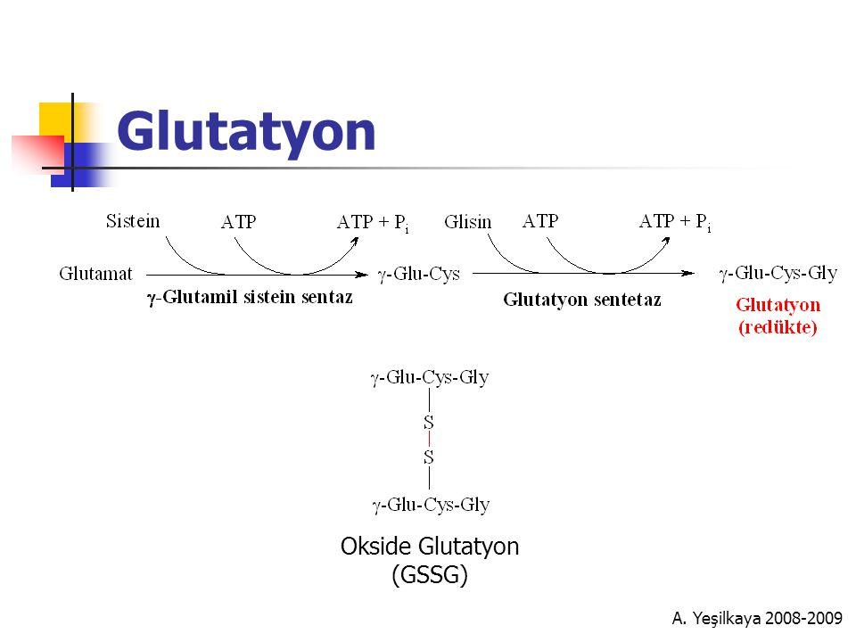 A. Yeşilkaya 2008-2009 Glutatyon Okside Glutatyon (GSSG)