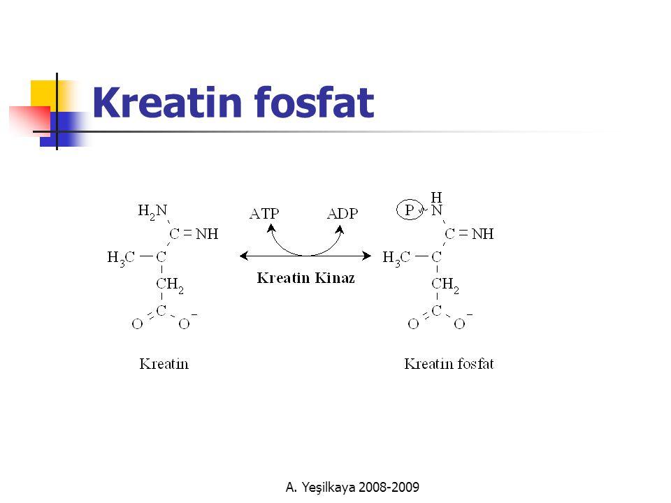 A. Yeşilkaya 2008-2009 Kreatin fosfat