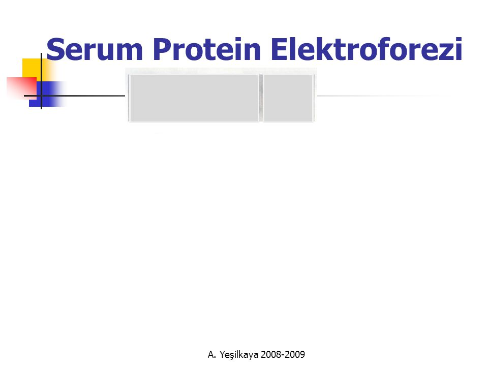 Serum Protein Elektroforezi A. Yeşilkaya 2008-2009