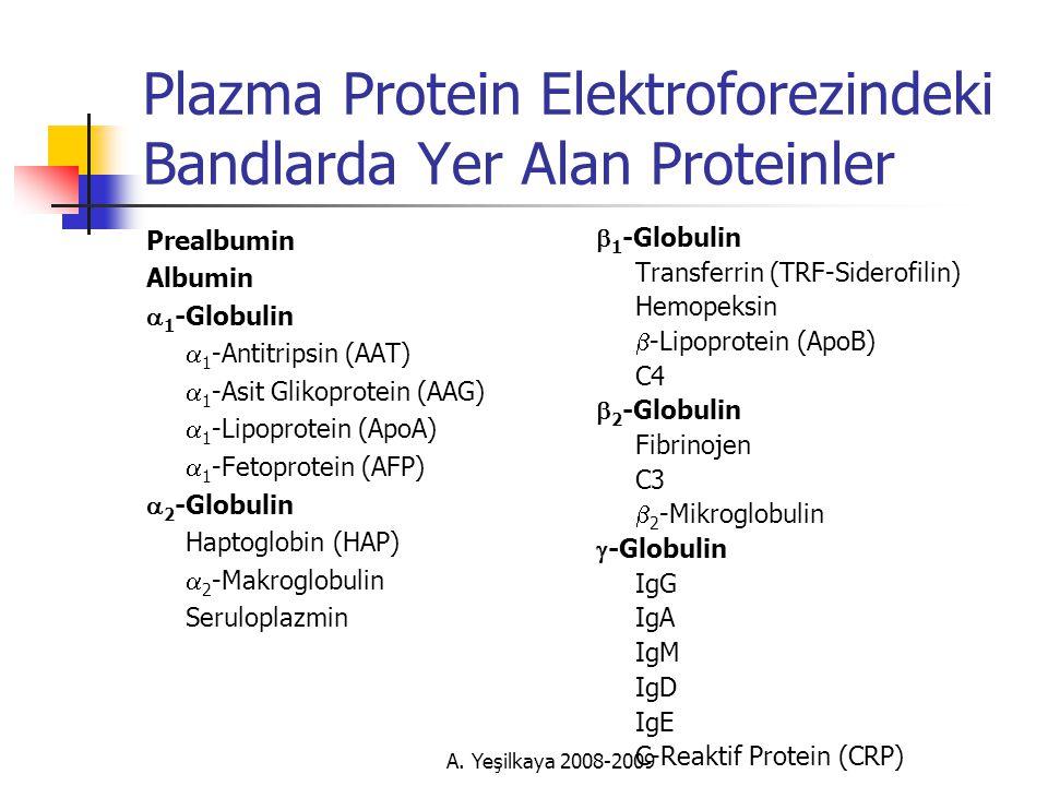 Plazma Protein Elektroforezindeki Bandlarda Yer Alan Proteinler Prealbumin Albumin  1 -Globulin  1 -Antitripsin (AAT)  1 -Asit Glikoprotein (AAG)  1 -Lipoprotein (ApoA)  1 -Fetoprotein (AFP)  2 -Globulin Haptoglobin (HAP)  2 -Makroglobulin Seruloplazmin  1 -Globulin Transferrin (TRF-Siderofilin) Hemopeksin  -Lipoprotein (ApoB) C4  2 -Globulin Fibrinojen C3  2 -Mikroglobulin  -Globulin IgG IgA IgM IgD IgE C-Reaktif Protein (CRP)
