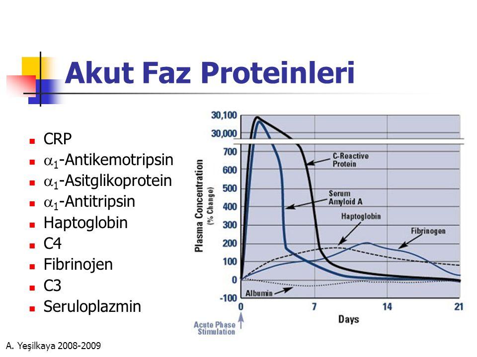 Akut Faz Proteinleri  CRP   1 -Antikemotripsin   1 -Asitglikoprotein   1 -Antitripsin  Haptoglobin  C4  Fibrinojen  C3  Seruloplazmin
