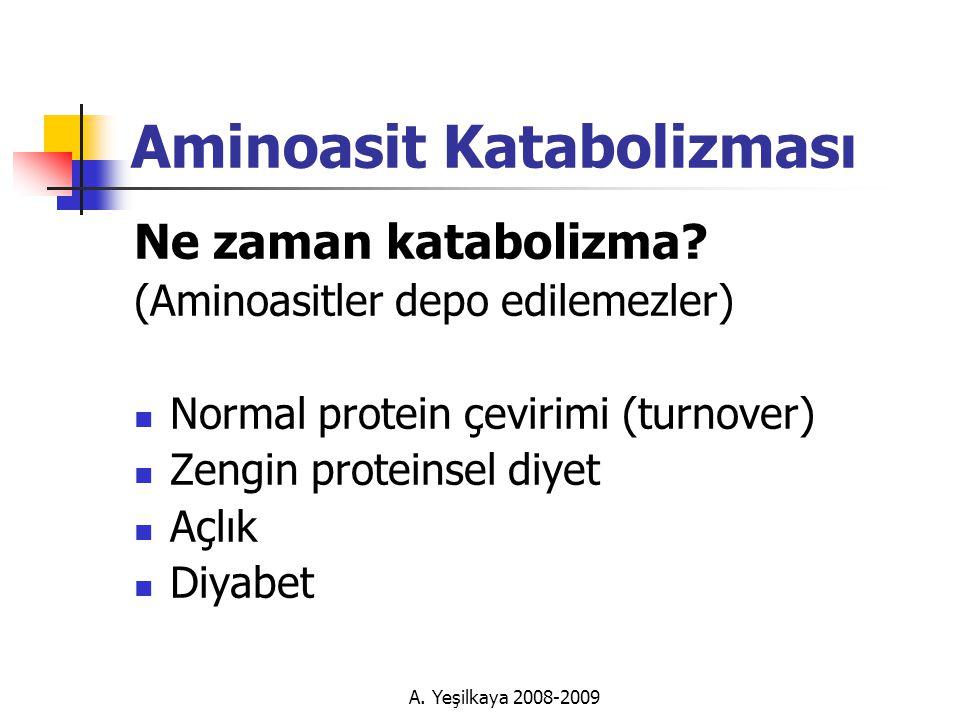 A.Yeşilkaya 2008-2009 Aminoasit Katabolizması Ne zaman katabolizma.