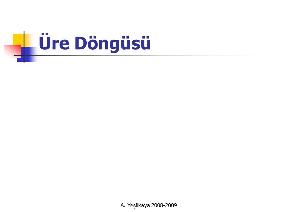 Üre Döngüsü A. Yeşilkaya 2008-2009