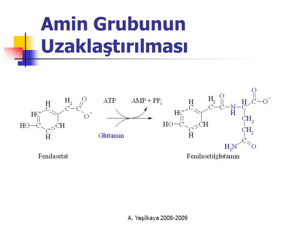 A. Yeşilkaya 2008-2009 Amin Grubunun Uzaklaştırılması