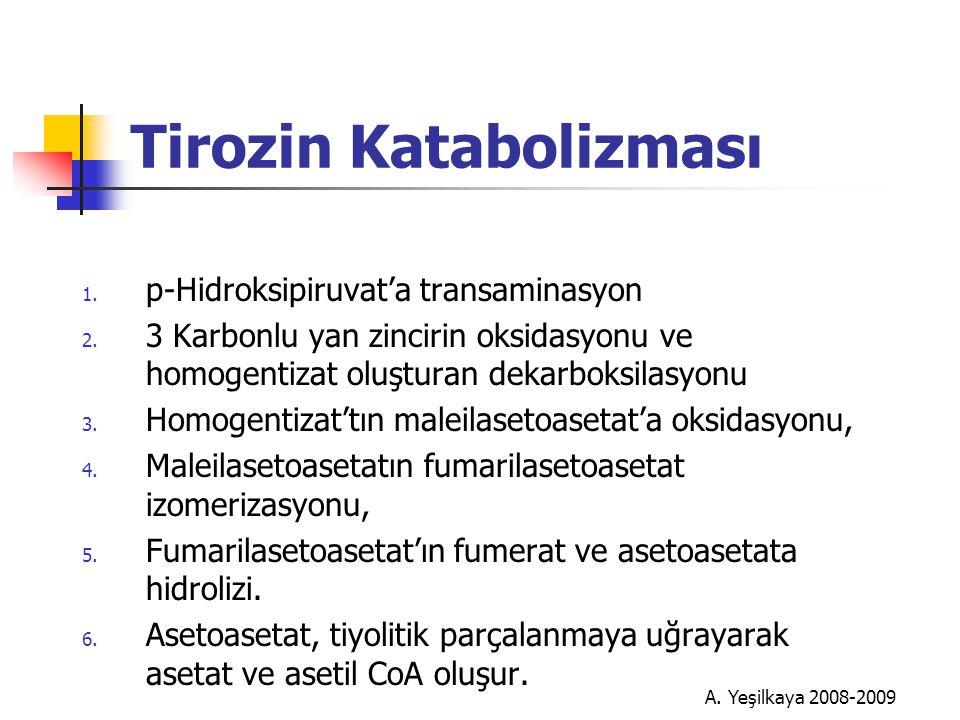 A.Yeşilkaya 2008-2009 Tirozin Katabolizması 1. p-Hidroksipiruvat'a transaminasyon 2.