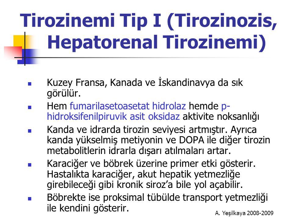 Tirozinemi Tip I (Tirozinozis, Hepatorenal Tirozinemi)  Kuzey Fransa, Kanada ve İskandinavya da sık görülür.