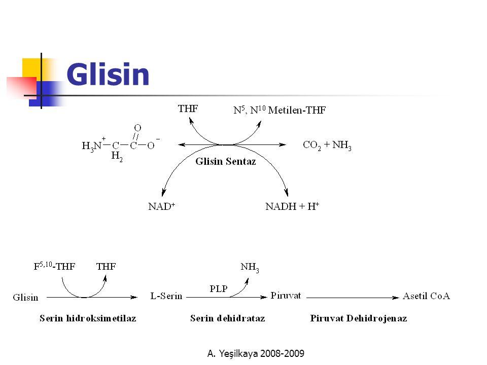 A. Yeşilkaya 2008-2009 Glisin