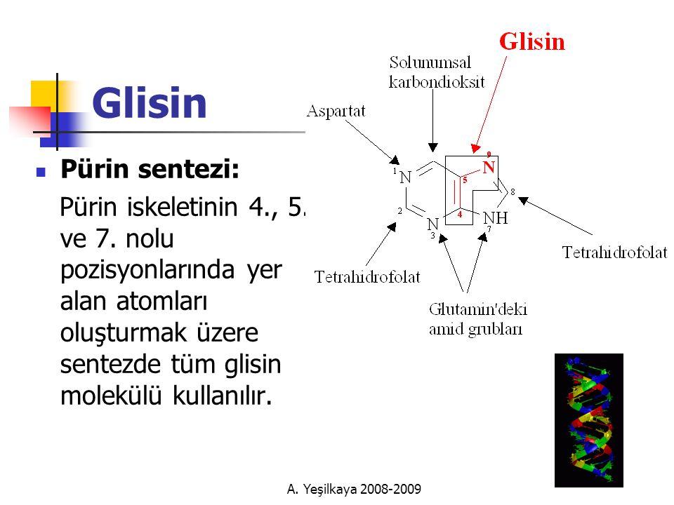 A.Yeşilkaya 2008-2009 Glisin  Pürin sentezi: Pürin iskeletinin 4., 5.