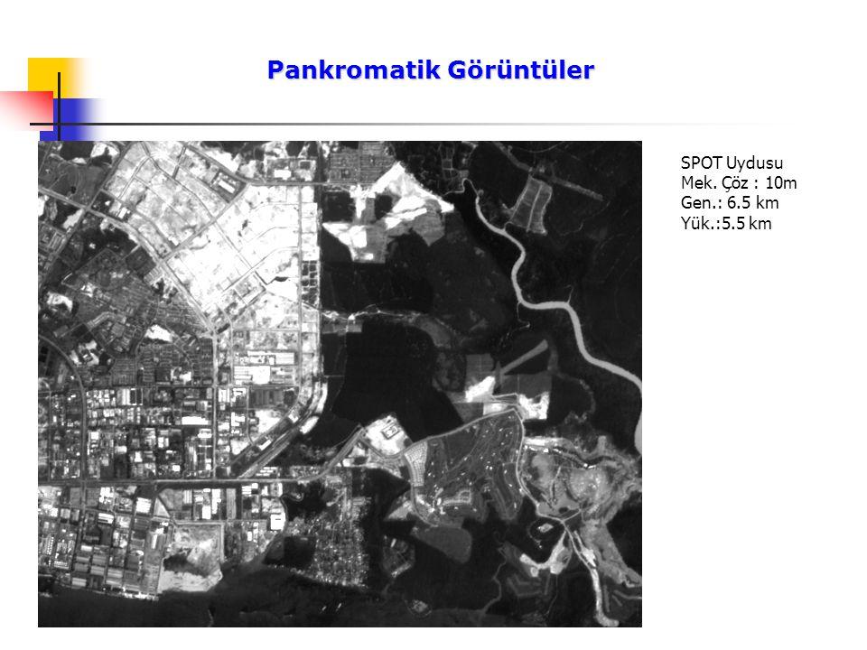 Pankromatik Görüntüler Pankromatik Görüntüler SPOT Uydusu Mek. Çöz : 10m Gen.: 6.5 km Yük.:5.5 km