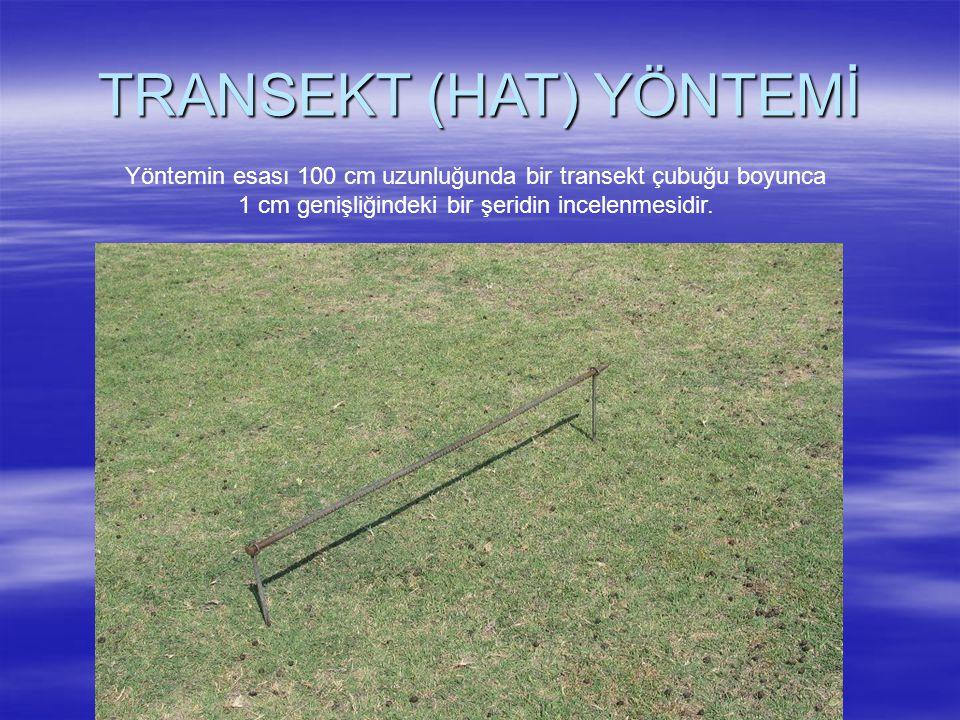 TRANSEKT (HAT) YÖNTEMİ Yöntemin esası 100 cm uzunluğunda bir transekt çubuğu boyunca 1 cm genişliğindeki bir şeridin incelenmesidir.