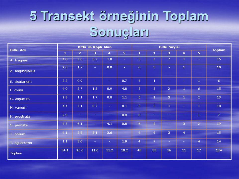 Hesaplamalar Bir Transekt 1 cm 100 cm 1*100 = 100 cm 2 10 transektte çalışma yapıldığına göre 10*100 - 1000 cm 2 Ortalama bitki ile kaplı alan (% de olarak); l numaralı bitki için : 48*100 1000 2 numaralı bitki için : 20*100 1000 3 numaralı bitki için : 11*100 1000 I.
