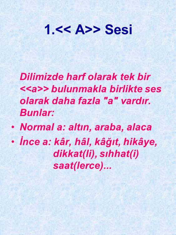 TÜRKÇENİN BAZI SESLERİYLE İLGİLİ ÖZELLİKLER Türkçedeki kimi sesler, telâffuz açısından son derece önem taşımaktadır.