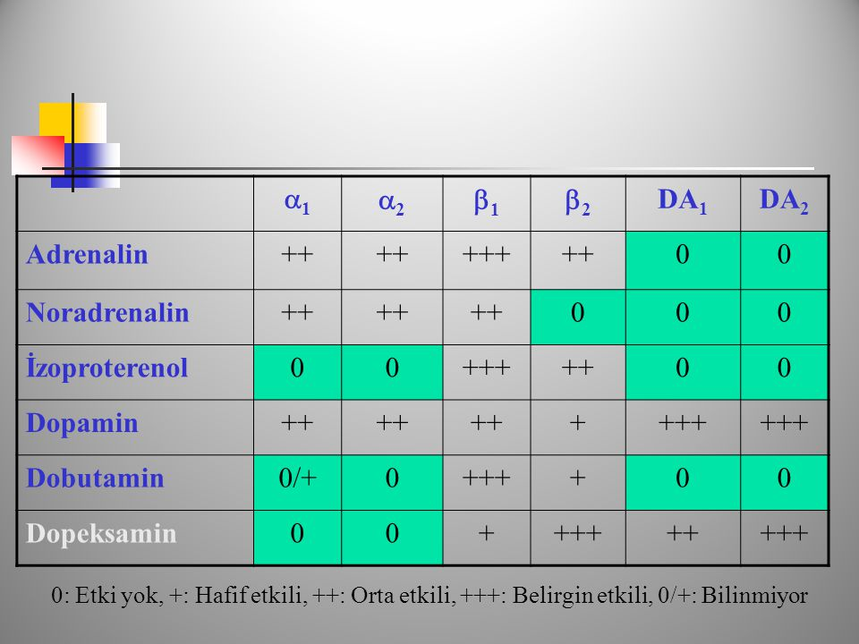11 22 11 22 DA 1 DA 2 Adrenalin++ +++++00 Noradrenalin++ 000 İzoproterenol00+++++00 Dopamin++ ++++ Dobutamin0/+0++++00 Dopeksamin00+++++++++ 0: Etki yok, +: Hafif etkili, ++: Orta etkili, +++: Belirgin etkili, 0/+: Bilinmiyor