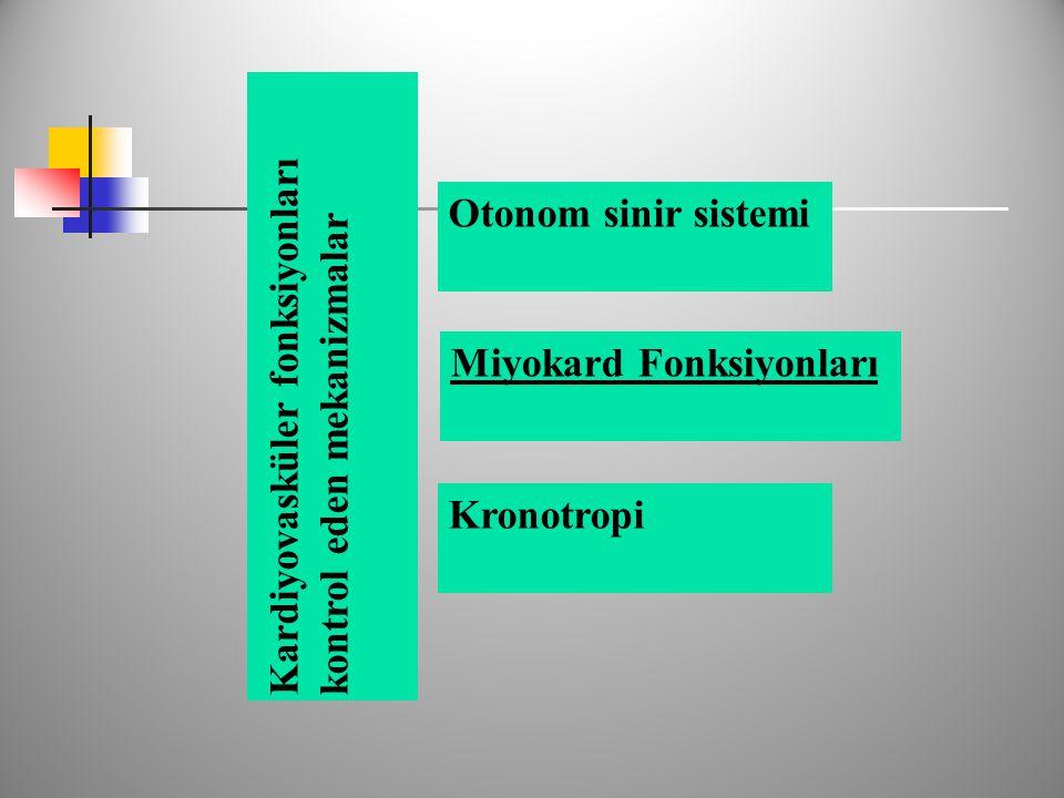 Otonom sinir sistemi Miyokard Fonksiyonları Kronotropi Kardiyovasküler fonksiyonlarıkontrol eden mekanizmalar