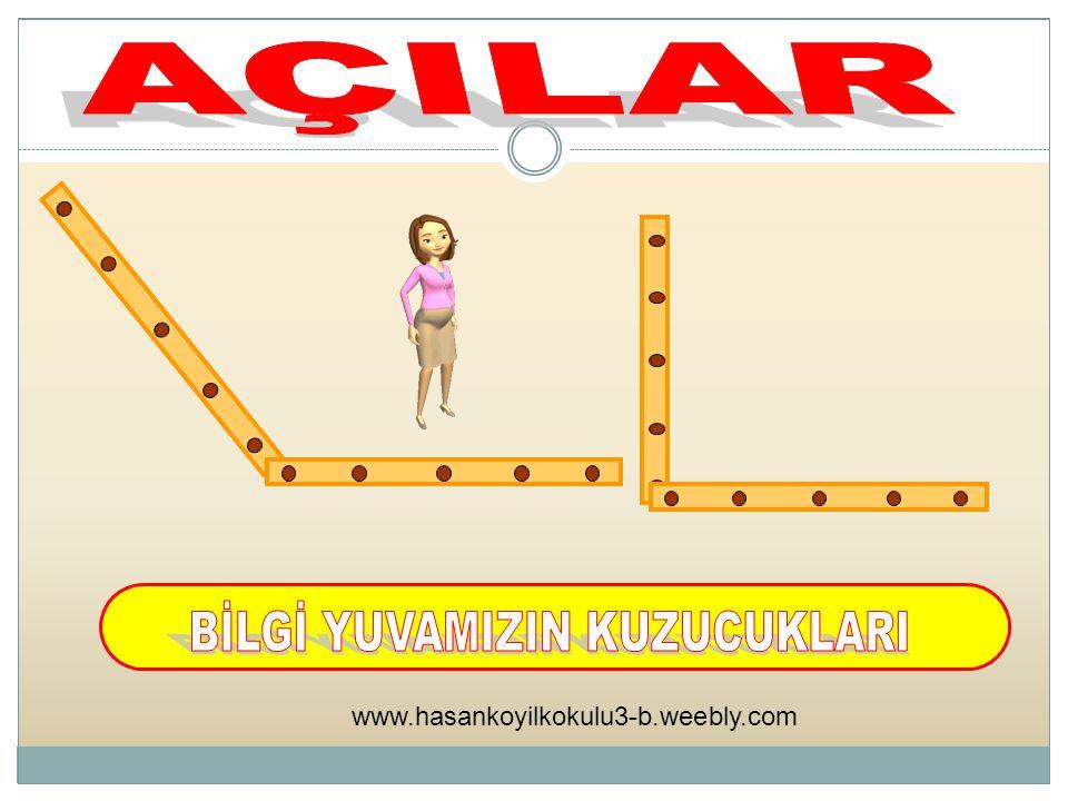 www.hasankoyilkokulu3-b.weebly.com