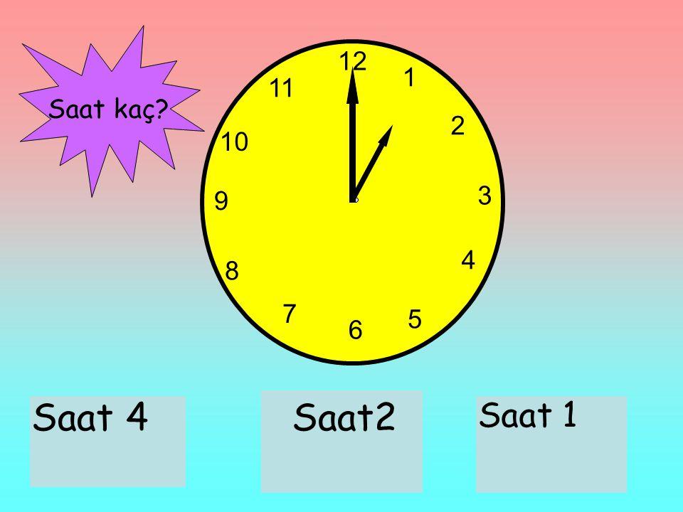 12 1 2 3 6 9 11 10 7 8 4 5 Saat 4Saat2 Saat 1 Saat kaç?
