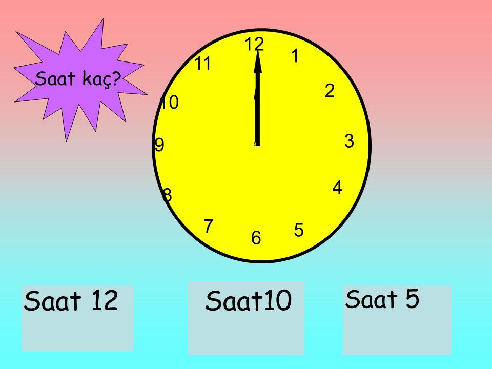 12 1 2 3 6 9 11 10 7 8 4 5 Saat 12Saat10 Saat 5 Saat kaç?