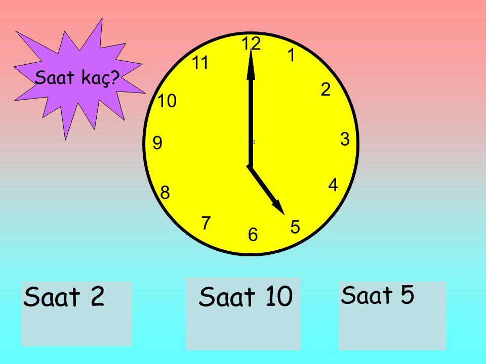 12 1 2 3 6 9 11 10 7 8 4 5 Saat 2Saat 10 Saat 5 Saat kaç?