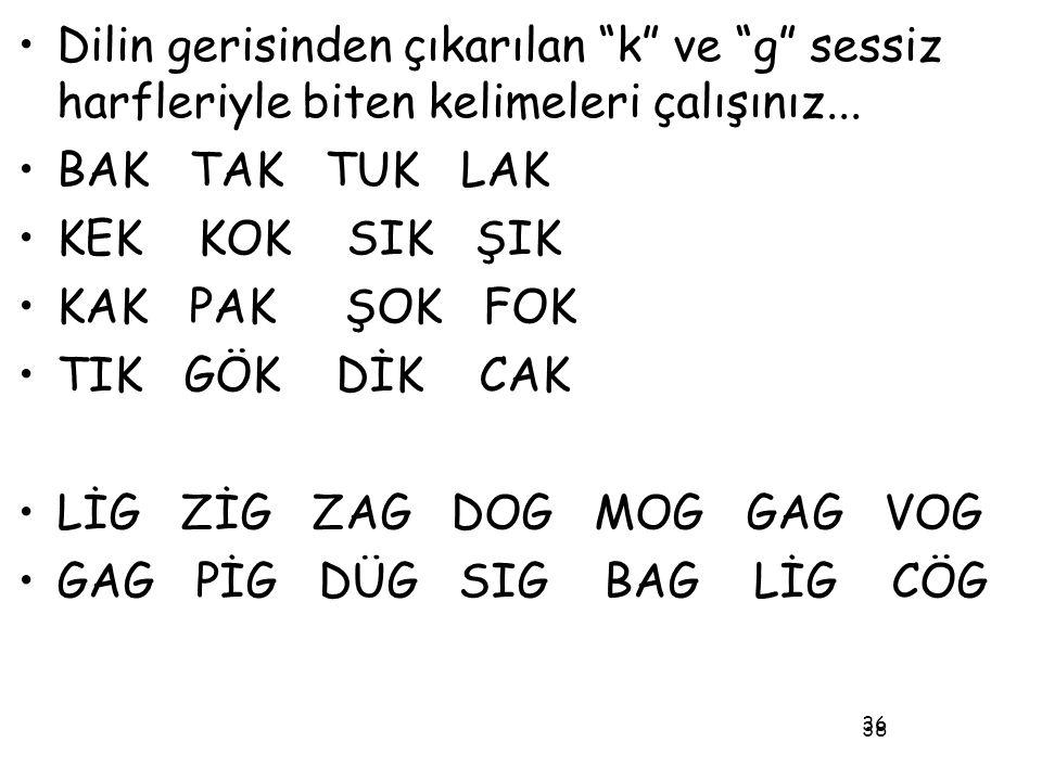 """38 •Dilin gerisinden çıkarılan """"k"""" ve """"g"""" sessiz harfleriyle biten kelimeleri çalışınız... •BAK TAK TUK LAK •KEK KOK SIK ŞIK •KAK PAK ŞOK FOK •TIK GÖK"""