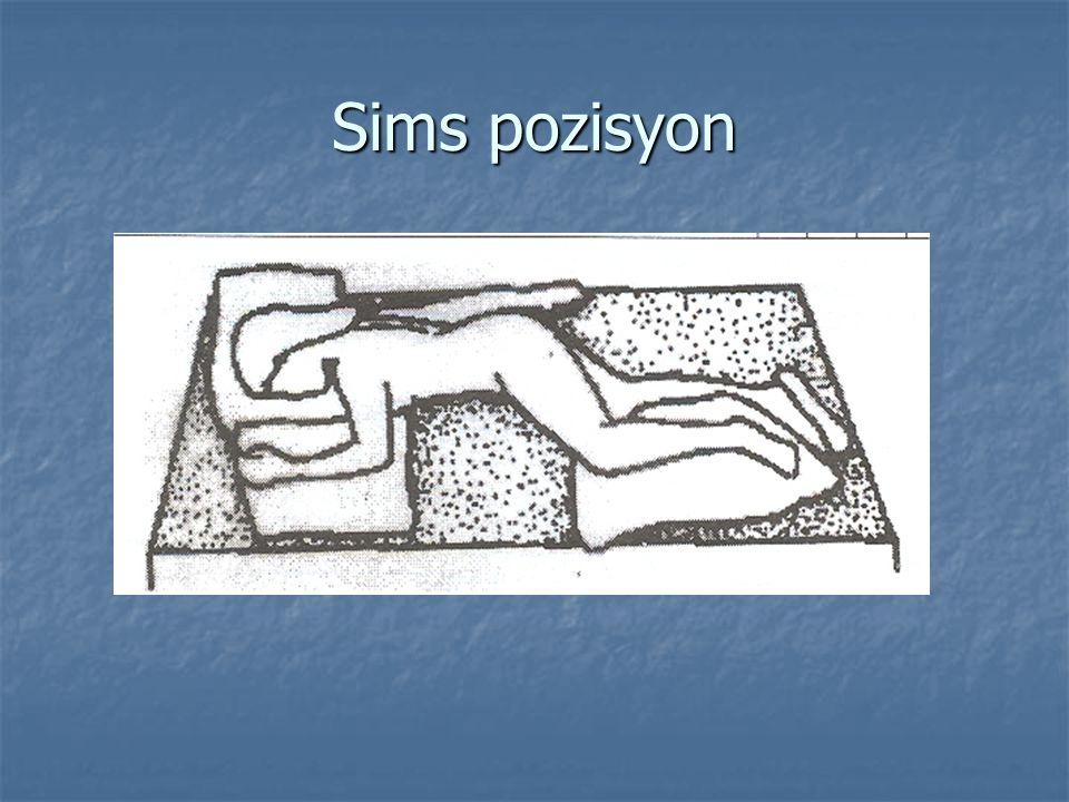 Sims pozisyon