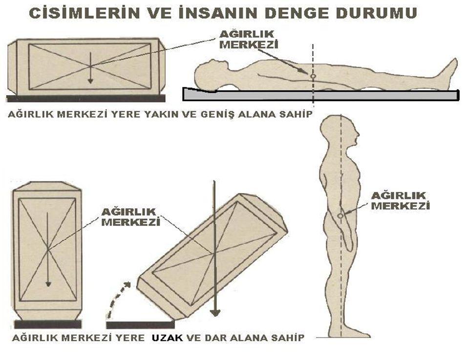 DORSAL REKUMBENT POZİSYON