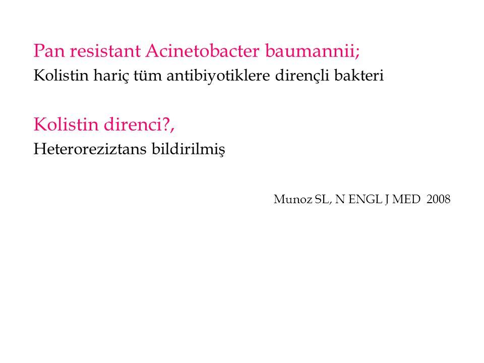 Pan resistant Acinetobacter baumannii; Kolistin hariç tüm antibiyotiklere dirençli bakteri Kolistin direnci?, Heteroreziztans bildirilmiş Munoz SL, N
