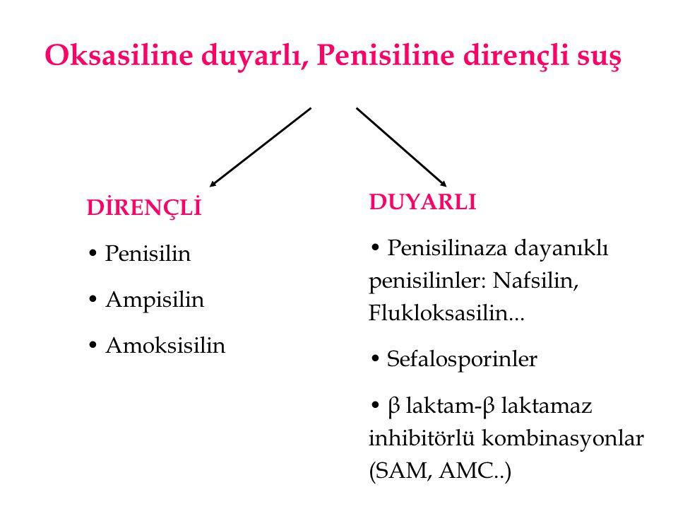 Oksasiline duyarlı, Penisiline dirençli suş DİRENÇLİ • Penisilin • Ampisilin • Amoksisilin DUYARLI • Penisilinaza dayanıklı penisilinler: Nafsilin, Fl