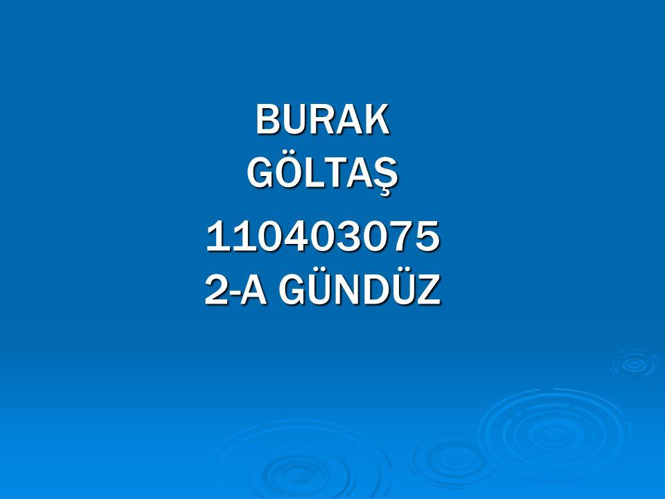 BURAK GÖLTAŞ 110403075 2-A GÜNDÜZ