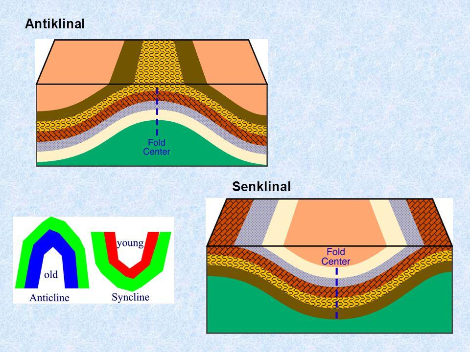 Antiklinal Senklinal