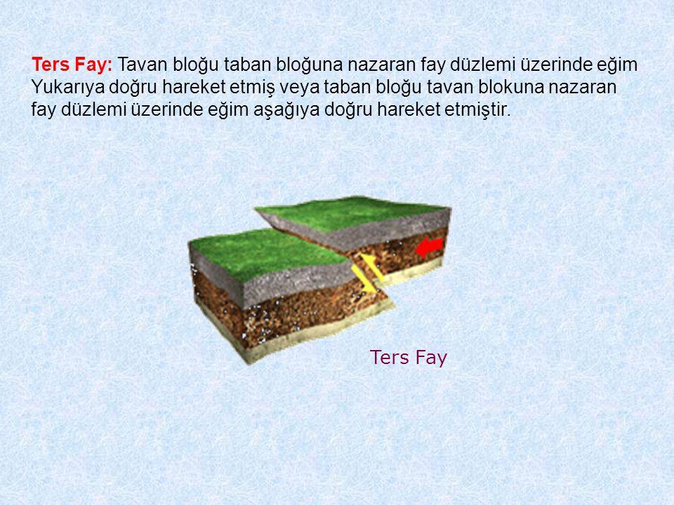 Ters Fay Ters Fay: Tavan bloğu taban bloğuna nazaran fay düzlemi üzerinde eğim Yukarıya doğru hareket etmiş veya taban bloğu tavan blokuna nazaran fay düzlemi üzerinde eğim aşağıya doğru hareket etmiştir.