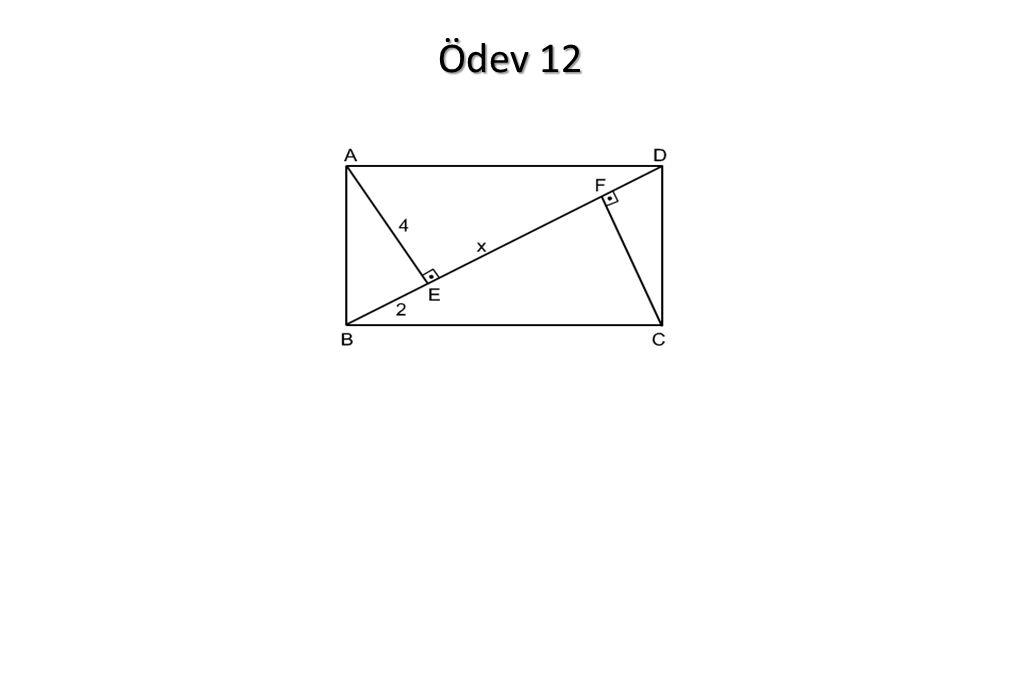 Ödev 12
