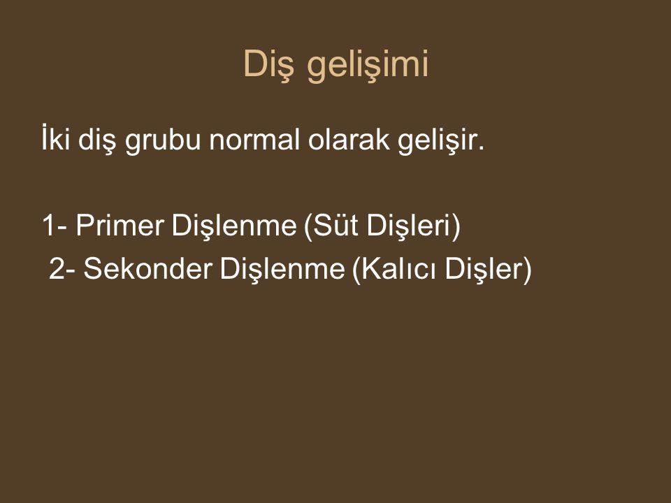 Gelişim (Odontogenezis) •Ağız ektodermi •Mezoderm •Nöral krista hücrelerinden gelişir.