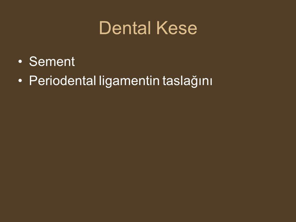 Dental Kese •Sement •Periodental ligamentin taslağını