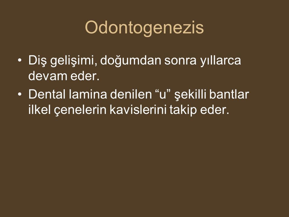 """Odontogenezis •Diş gelişimi, doğumdan sonra yıllarca devam eder. •Dental lamina denilen """"u"""" şekilli bantlar ilkel çenelerin kavislerini takip eder."""