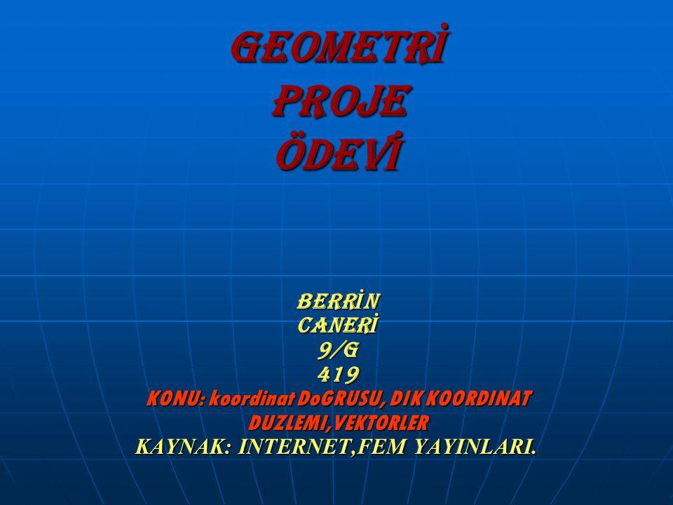 GEOMETR İ PROJE ÖDEV İ BERR İ N CANER İ 9/G 419 KONU: koordinat DoGRUSU, DIK KOORDINAT DUZLEMI,VEKTORLER KAYNAK: INTERNET,FEM YAYINLARI.