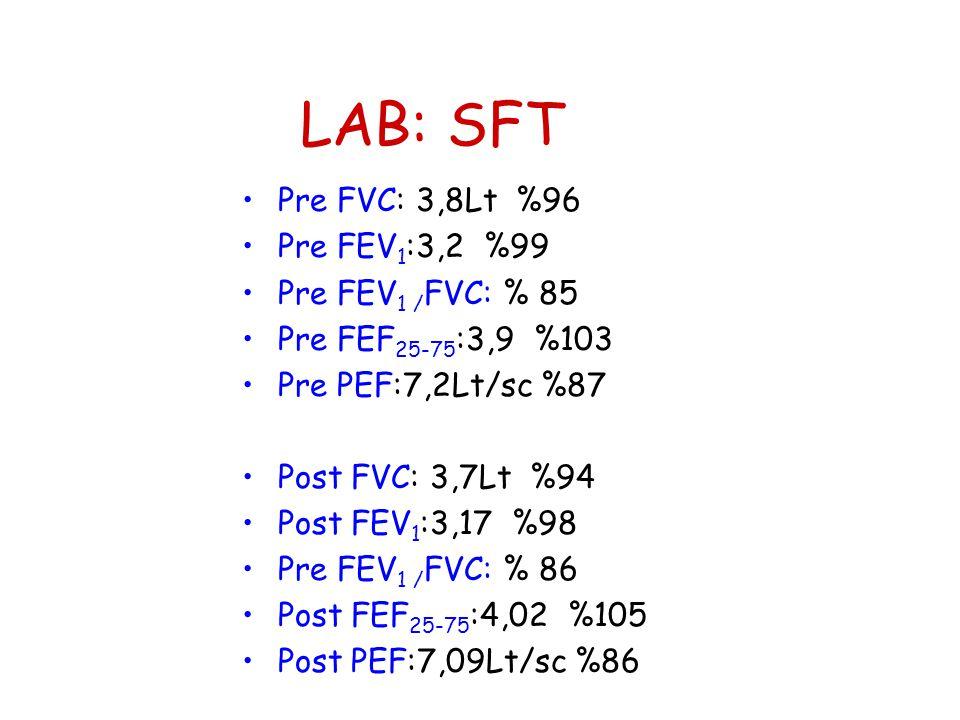 LAB: SFT •Pre FVC: 3,8Lt %96 •Pre FEV 1 :3,2 %99 •Pre FEV 1 / FVC: % 85 •Pre FEF 25-75 :3,9 %103 •Pre PEF:7,2Lt/sc %87 •Post FVC: 3,7Lt %94 •Post FEV