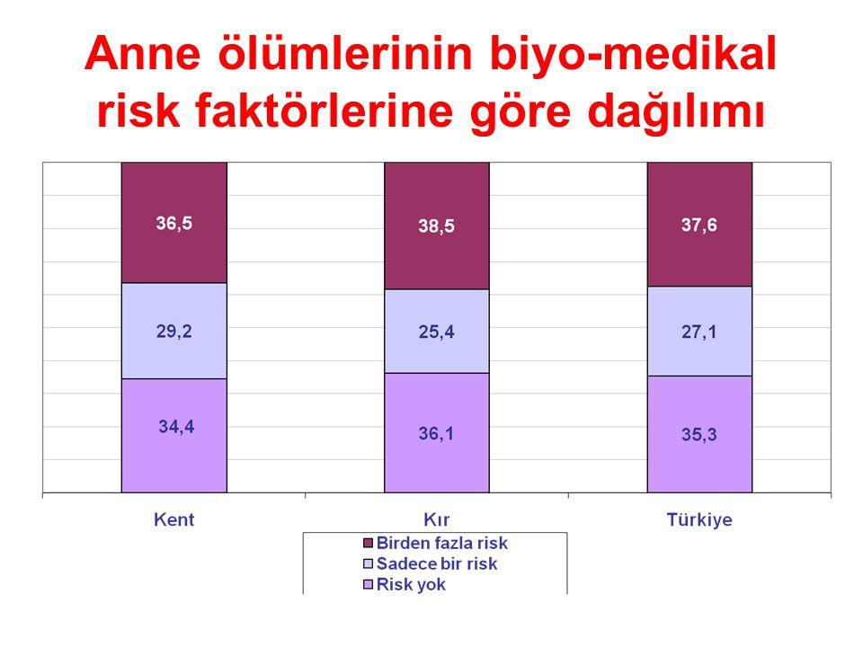 Anne ölümlerinin biyo-medikal risk faktörlerine göre dağılımı