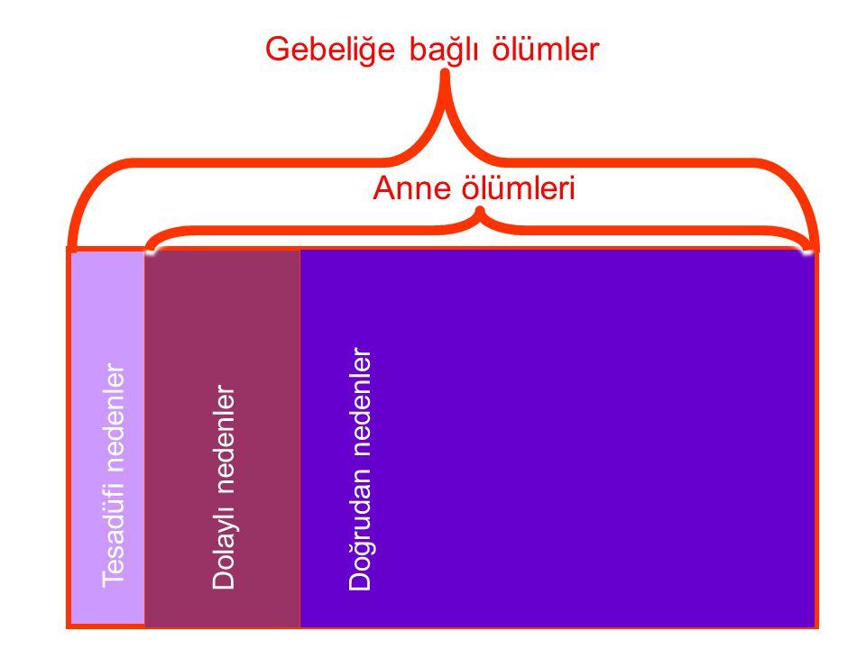 17 UAÖÇ'nın kapsamı • Kapsam: 29 ildeki tüm mezarlıklar • 16,139 yerleşim yeri (15,854 kırsal; 285 kentsel) • 39 milyon nüfus • Türkiye nüfusunun yüzde 54'ü