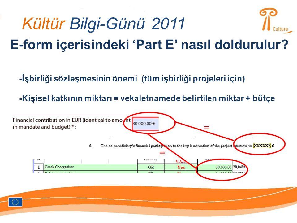 Kültür Bilgi-Günü 2011 E-form içerisindeki 'Part E' nasıl doldurulur.