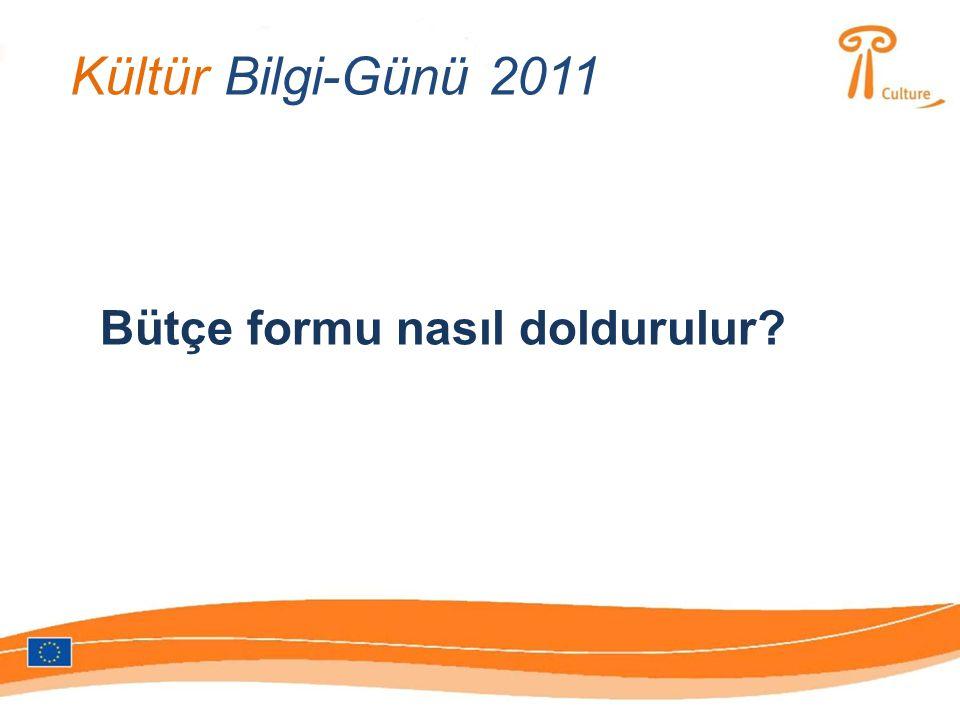 Kültür Bilgi-Günü 2011 Bütçe formu nasıl doldurulur?