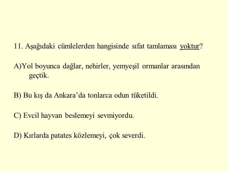 11. Aşağıdaki cümlelerden hangisinde sıfat tamlaması yoktur? A)Yol boyunca dağlar, nehirler, yemyeşil ormanlar arasından geçtik. B) Bu kış da Ankara'd