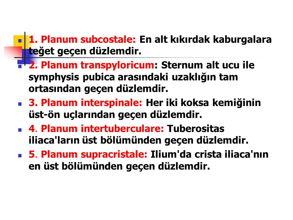  1. Planum subcostale: En alt kıkırdak kaburgalara teğet geçen düzlemdir.  2. Planum transpyloricum: Sternum alt ucu ile symphysis pubica arasındaki